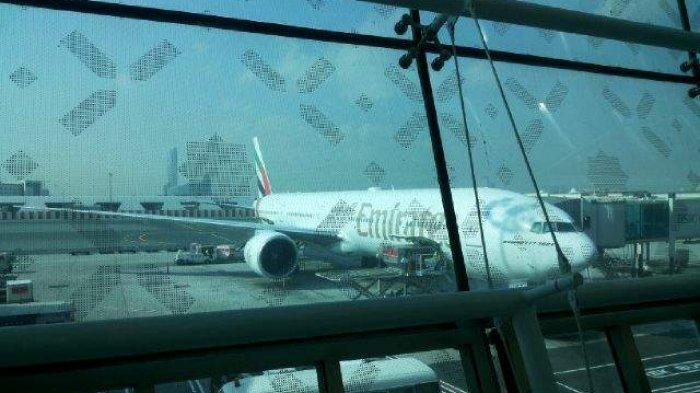 Bodi Pesawat Komersial Identik dengan Warna Putih, Ternyata Ini Alasan di Baliknya