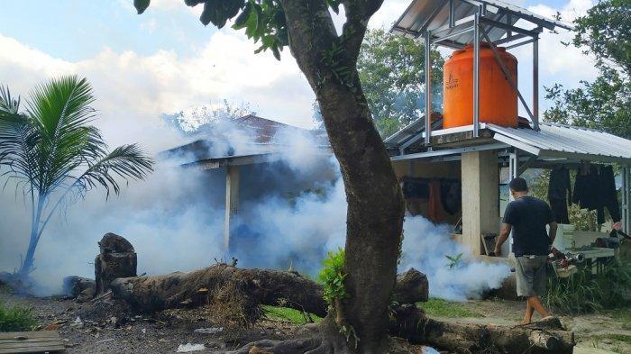 Kasus DBD di Belitung Diprediksi Naik Kembali Pada 2023