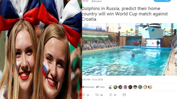 Ramalan Lumba-lumba, Rusia Menang atas Kroasia Ini Videonya