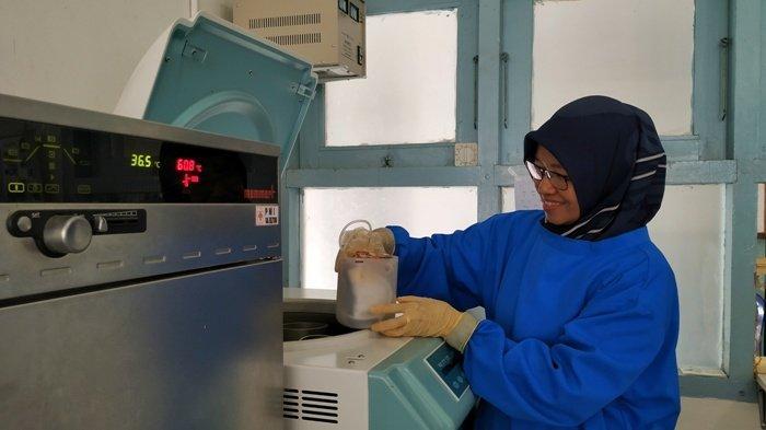 Kasus DBD di Kabupaten Belitung Marak, PMI Banyak Mendapatkan Permintaan Trombosit
