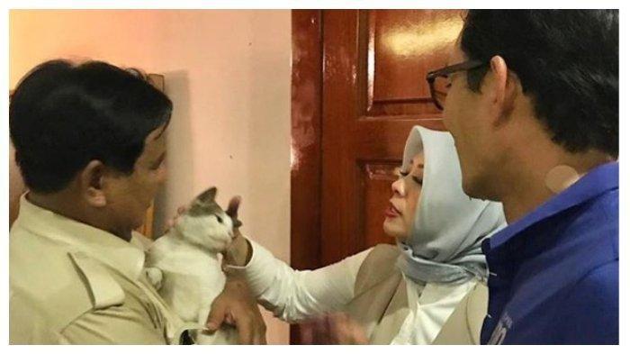 Sandiaga Sakit, Prabowo Datang Menjenguk Sambil Bawa Kucing Kesayangannya
