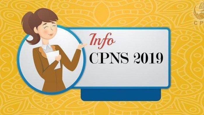 Senin Besok Mulai Dibuka Pendaftaran CPNS 2019 Secara Online, Ini Alur Pendaftarannya