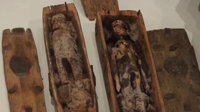 17 Peti Mati Berisi Boneka di Tengah Hutan Ini Diyakini Terkait Kasus Pembunuhan Mengerikan