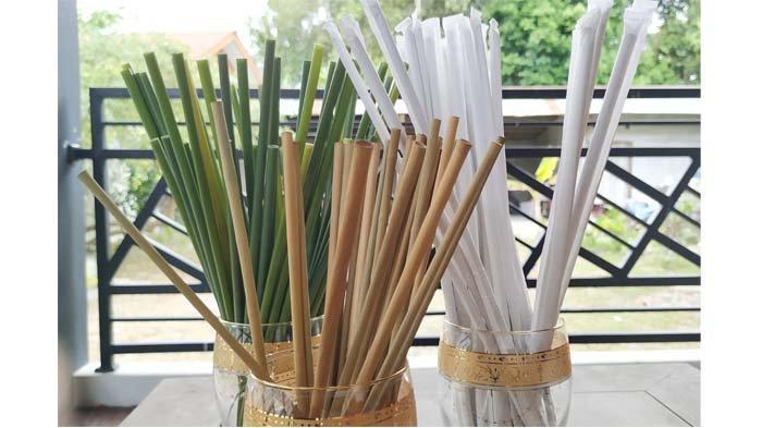 Solusi Sampah Plastik, Belitung Punya Sedotan Purun, Menparekraf: Ini Nih yang Dicari Dari Tadi - sedotan-purun-yang-ramah-lingkungan.jpg