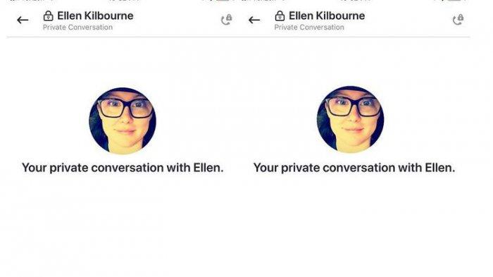 Kini Teks dan Telepon Skype Dipasangi Pengaman