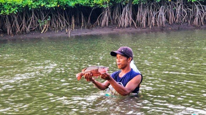Nikmati Serunya Susuri Pesona Suak Parak Mangrove Park di Belitung, Ada Trip Bagi Penghobi Mancing - suak3.jpg