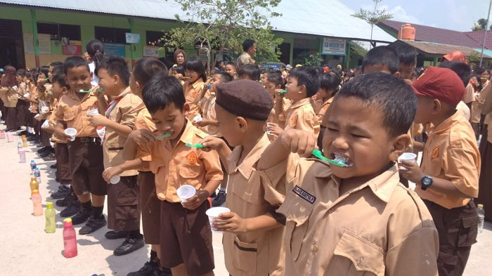 Bulan Kesehatan Gigi Nasional 2018 di Belitung, PDGI Ajak Siswa SD Rawat Gigi