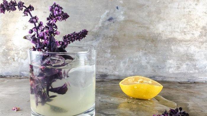 Selain Bisa di Makan, 7 Tanaman Ini Juga Ampuh Menjadi Alternatif Obat yang Alami