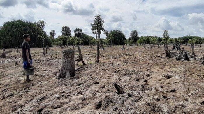 Geosite Geopark Belitong di Belitung Timur Terdampak Kemarau, Sungai Purba Jadi Padang Tandus