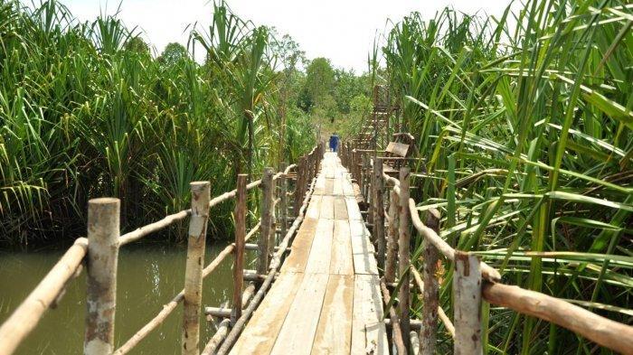 Susuri Bentang Alam Objek Wisata Tebat Rasau Desa Lintang - tebat-rasau-desa-lintang2.jpg