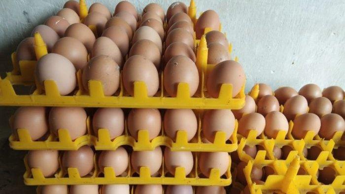 Aneka Olahan Telur dari Berbagai Negara, Bisa Jadi Ide Menu Makan Hari Ini