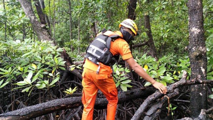 Hari Ketiga Pencarian Korban Serangan Buaya di Belitung Timur, Tim SAR Sisiri Bakau dan Pulau Kecil