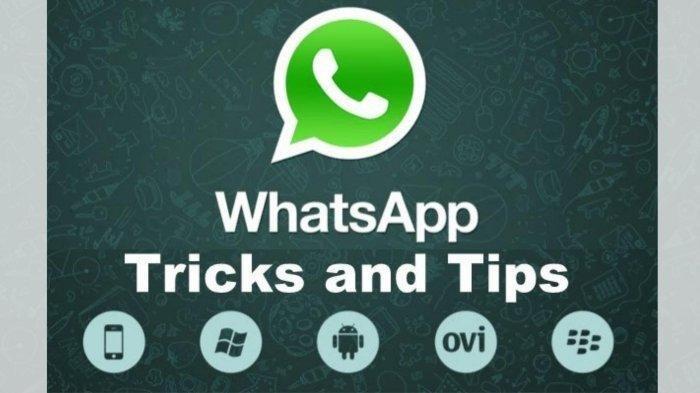 Ini Fitur Baru WhatsApp, Pesan Bisa Menghilang setelah 7 Hari?