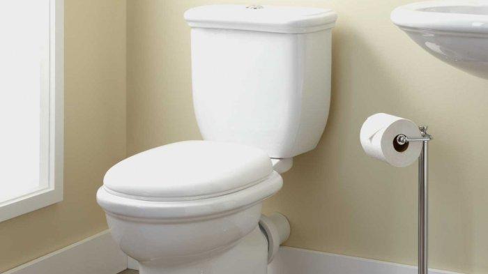 Kadindikbud Sarankan Pedagang Halaman Genas Sewa Mobil Toilet