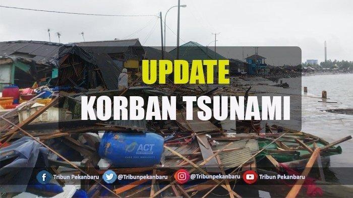 Update Korban Tsunami, 222 Orang Meninggal Dunia, 843 Orang Luka-luka, 28 Hilang