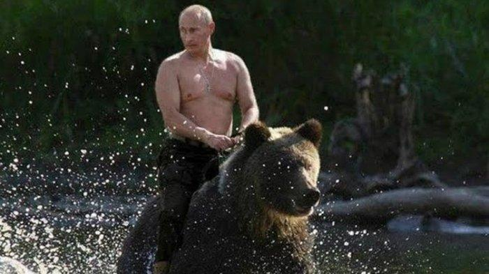 Ngeri Tunggangan Presiden Rusia Vladimir Putin Beruang Hitam, Media Penasaran Kaget Fakta Terungkap