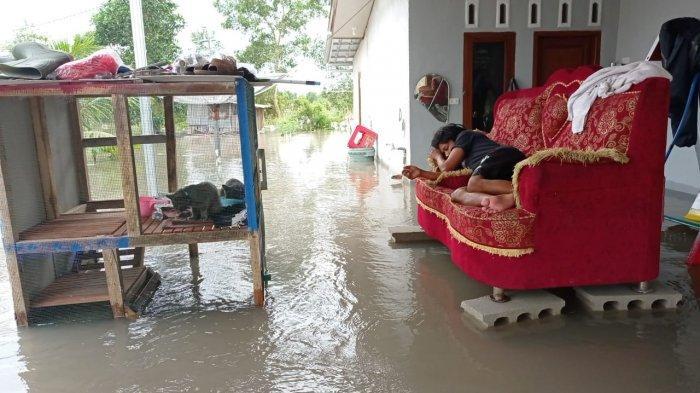 Analisa BPBD Belitung Atasi Banjir Harus Ada Daerah Tangkapan Air dan Pendalaman Alur