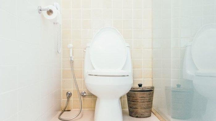 Mana yang Lebih Baik untuk Kesehatan, Toilet Duduk atau Toilet Jongkok?
