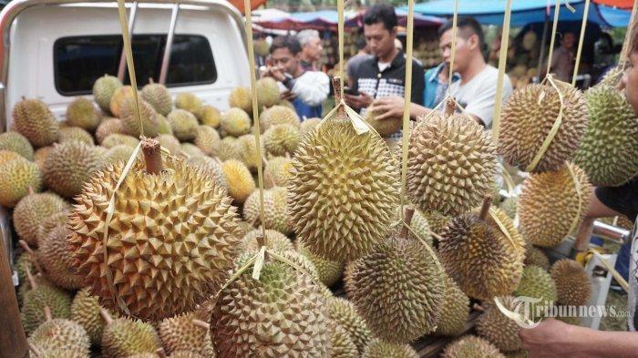 Biji Durian Ternyata Punya 5 Manfaat Baik untuk Kesehatan Tubuh