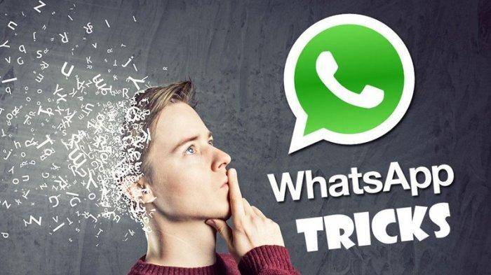 Meneruskan Pesan di WhatsApp Cuma Bisa 5 Kali Sekarang Bagi Pengguna OS Android, Ini Penjelasannya