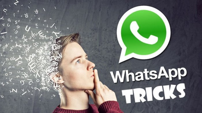 Ini Kumpulan 12 Tips dan Trik WhatsApp Terbaru yang Penting Banget