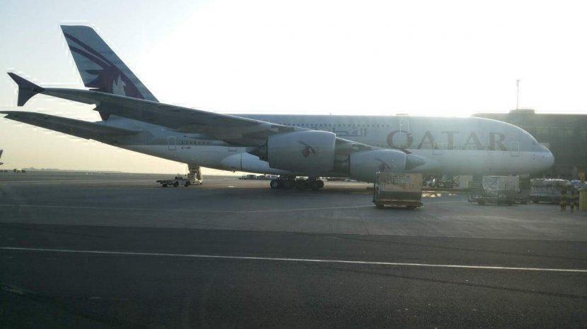 Qatar Airways Bagikan 21 000 Tiket Gratis Untuk Para Guru Begini Cara Mendapatkannya Pos Belitung