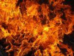 api-besar_20170303_132124.jpg