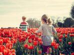 bunga-tulip1.jpg