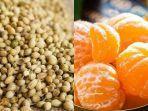 campuran-ketumbar-dan-jeruk-bisa-berikan-manfaat-tak-terduga-untuk-kekebalan-tubuh.jpg