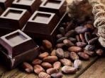 cokelat-hitam-dapat-mengurangi-risiko-terserang-penyakit-kardiovaskular-cvd.jpg