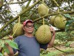 durian_20180809_220359.jpg