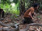 foto-terbaru-king-kobra-milik-panji.jpg
