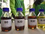ilustrasi-biodiesel-b30.jpg