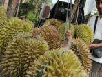 ilustrasi-buah-durian1.jpg