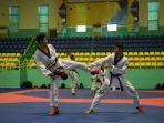ilustrasi-taekwondo.jpg