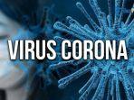 ilustrasi-virus-coronacovid-19-hasil-studi.jpg