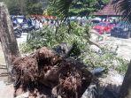 kondisi-akar-pohon-yang-tumbang_20180819_133515.jpg