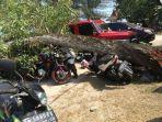 kondisi-kendaraan-tertimpa-pohon-tumbang-di-area-taman-hiburan-tanjungpendam_20180819_124501.jpg