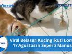 kucing-17-agustusan.jpg