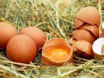manfaat-mengonsumsi-telur-setiap-hari.jpg