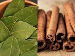minum-campuran-dari-daun-salam-dan-kayu-manis-miliki-manfaat-baik-untuk-kesehatan.jpg