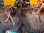 nelayan-ssal-malaysia-dapat-ikan-pari-raksasa-seberat-280-kilogram.jpg