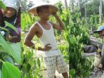 para-petani-belitung-sedang-tertawa-di-sela-sela-kegiatan-memanen-lada-di-kebun-mereka_20181107_204007.jpg