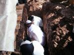 pemakaman-istri-tukul-arwana_20160824_153831.jpg