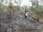 petugas-damkar-memadamkan-kebakaran-di-lahan-di-desa-jangkar-asam_20180820_163443.jpg