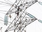 petugas-melakukan-pengecekan-serta-perawatan-tower-listrik.jpg