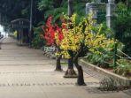 pohon-plastik-di-jalan-medan-merdeka-barat_20180601_223400.jpg