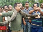 pria-di-india-terlilit-ular-piton_20180621_103203.jpg