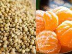 rutin-minum-campuran-ketumbar-dan-jeruk-bisa-berikan-manfaat-untuk-kekebalan-tubuh.jpg