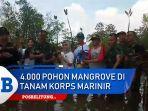 terdapat-4000-pohon-mangrove-jumat-1112019-di-tanam-di-area-hkm-seberang-bersatu.jpg